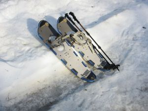 aejsnowshoes2